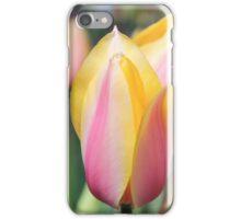 Springtime Tulips iPhone Case/Skin