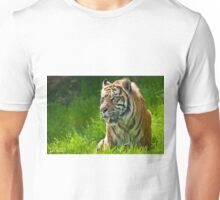 Portrait of a Sumatran Tiger Unisex T-Shirt