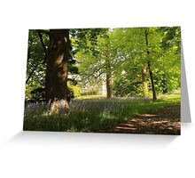 Bluebells at Lauriston Castle Greeting Card