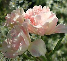 Spring Botanicals - Tulips by rennaisance