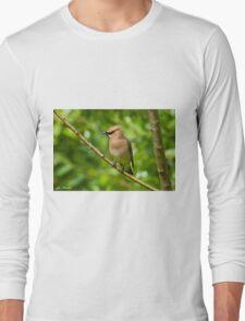 Cedar Waxwing Gathering Nesting Material Long Sleeve T-Shirt