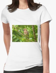 Cedar Waxwing Gathering Nesting Material Womens Fitted T-Shirt