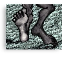 Furry Feet Canvas Print