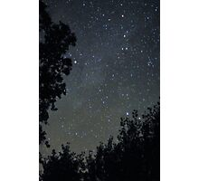 Milky Way through the trees Photographic Print