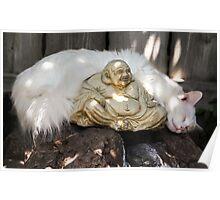 Sleeping Around Buddha...Namaste Poster