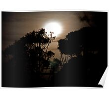 Moonlit Night 2 Poster