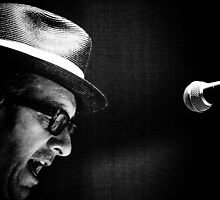 Elvis Costello by Natalie Ord
