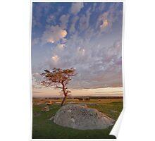 Dog Rocks Sunset. Poster