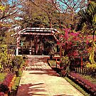 Garden in Yangon by wallarooimages