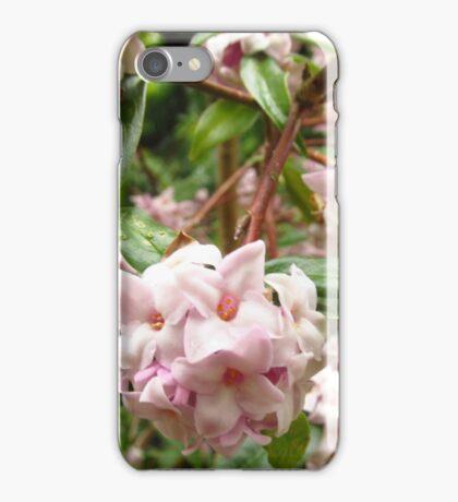 macro iPhone Case/Skin