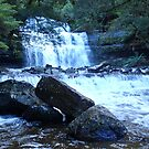 Liffey Falls, Tasmania. by Esther's Art and Photography