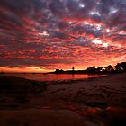 the next day, waubs bay. bicheno, tasmania by tim buckley | bodhiimages