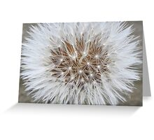 Nature´s Symmetry Greeting Card
