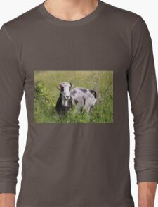 It's Funny Who You Meet When You're Out On Walks Long Sleeve T-Shirt