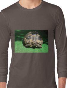 Eastern Hermann's Tortoise Long Sleeve T-Shirt