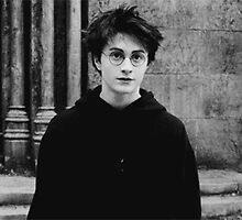 Harry Potter and The Prisoner of Azkaban film still by redroseses