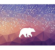 Beary Snowy in Purple Photographic Print