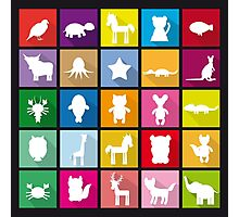 Animal squares Photographic Print