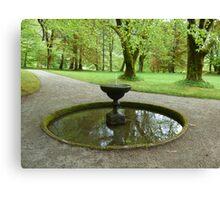 Tree reflectections Canvas Print