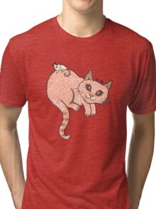 Bubble and Squeak Tri-blend T-Shirt