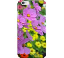 Pink cosmos flowers iPhone Case/Skin