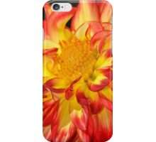 Orange and yellow dahlia flower iPhone Case/Skin