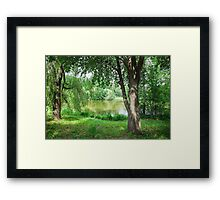 lake of the woods Framed Print