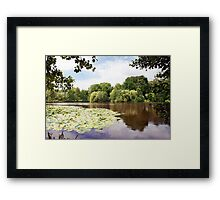 lake landscape with water lilies Framed Print
