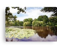 lake landscape with water lilies Canvas Print