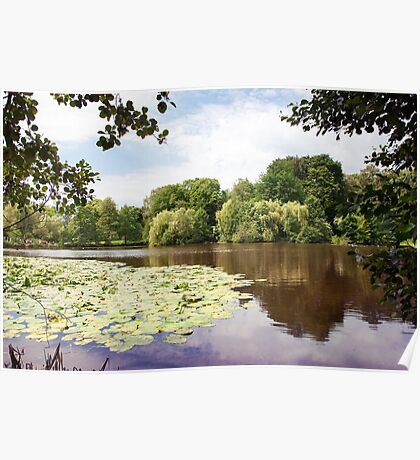 lake landscape with water lilies Poster