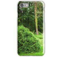 woodland scenery iPhone Case/Skin