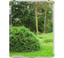 woodland scenery iPad Case/Skin