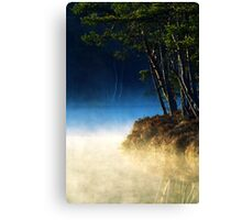 17.5.2014: Spring Morning Canvas Print