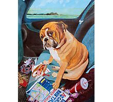 Hot Dog In The Car Photographic Print