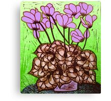Cyclamen  Canvas Print