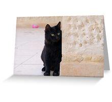 Blacky of Aqaba 2 Greeting Card