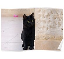 Blacky of Aqaba 2 Poster