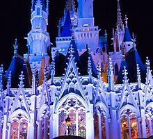 Cinderella's Castle by Mark Fendrick