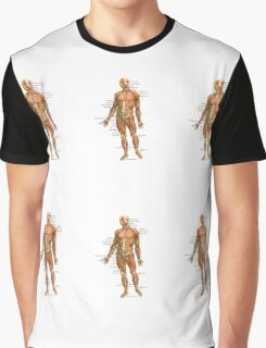 Body Muscles Graphic T-Shirt