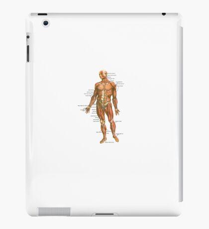 Body Muscles iPad Case/Skin