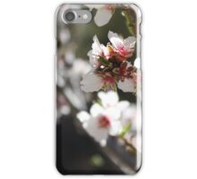 Apricot Tree Blossoms pt2 iPhone Case/Skin