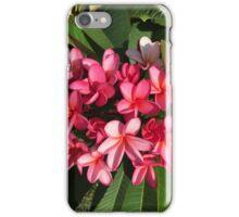 Pink frangipanis  iPhone Case/Skin