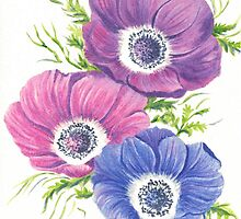Anemones on White by FranEvans