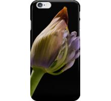 Agapanthus 2 iPhone Case/Skin