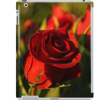 Ruby Red Birthday Roses  iPad Case/Skin