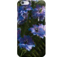 Larkspurs and Ferns - a Lush Summer Garden iPhone Case/Skin