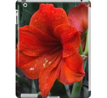 Ruby Red Amaryllis  iPad Case/Skin