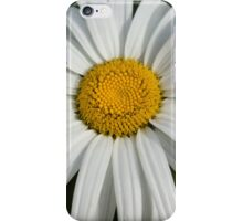 Just a Daisy iPhone Case/Skin
