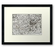 The Tsukapons in Cauliland Framed Print