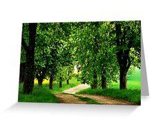 Walking under chestnut trees Greeting Card